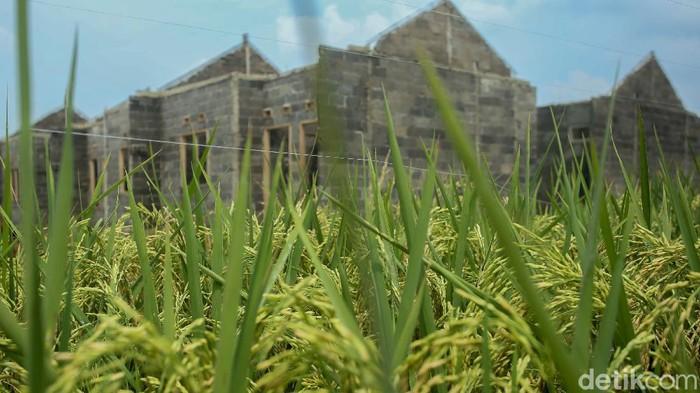 Alih fungsi lahan sawah menjadi perumahan kian marak terjadi. Kini, sejumlah lahan mulai terancam.
