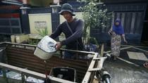 Tukang Loak Panen Rongsokan Pasca Banjir di Villa Nusa Indah