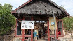 KLHK: Tidak Ada Konsep Jurassic Park di Pulau Rinca Komodo