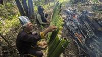 Warga desa Paau merupakan suku Dayak Kayu Tangi yang sangat menghargai alam yaitu hutan di sekeliling mereka sehingga secara turun temurun setiap tahun mereka menggelar ritual Seserahan Hutan.