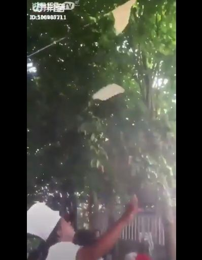 Bikin Ngakak! Atraksi Roti Canai Ini Berakhir Nyangkut di Kipas Angin dan Pohon