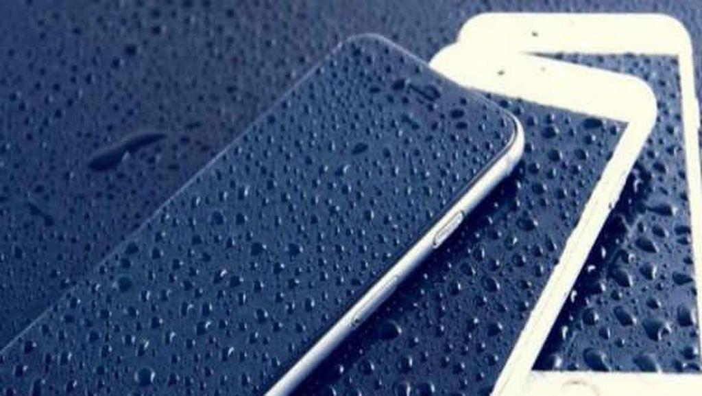 Tips Aman HP Tak Kebasahan di Musim Hujan