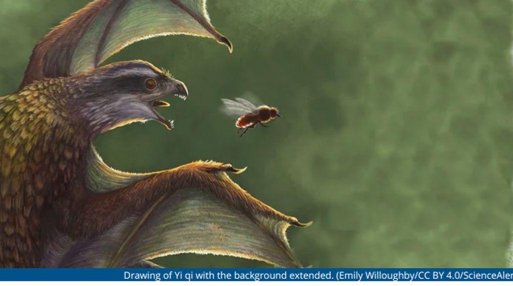 Punya Sayap, Dinosaurus Ini Terbangnya Lebih Payah Daripada Ayam