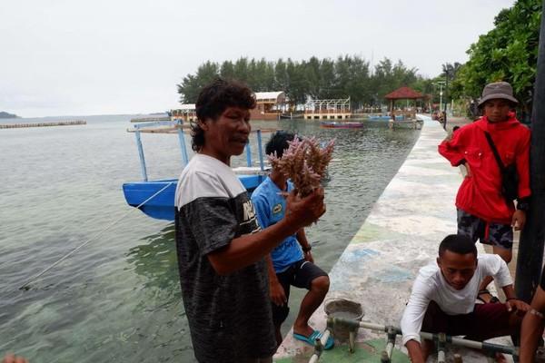 Menanam terumbu karang, kegiatan ini selain mengedukasi juga menjadi asyik karena kita diharuskan menanam sendiri di tepi laut. Harganya Rp 850 ribu. (Foto: Gema Bayu Samudra/dtraveler)
