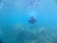 Snorkeling di lautnya yang jernih. (Foto: Gema Bayu Samudra/dtraveler)