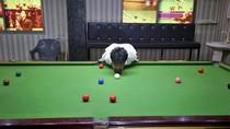 Tanpa Lengan, Pria Ini Wujudkan Mimpi Jadi Pemain Snooker Andal