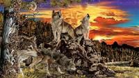 Tes Kepribadian: Ada Berapa Serigala yang Kamu Lihat Dalam Gambar?