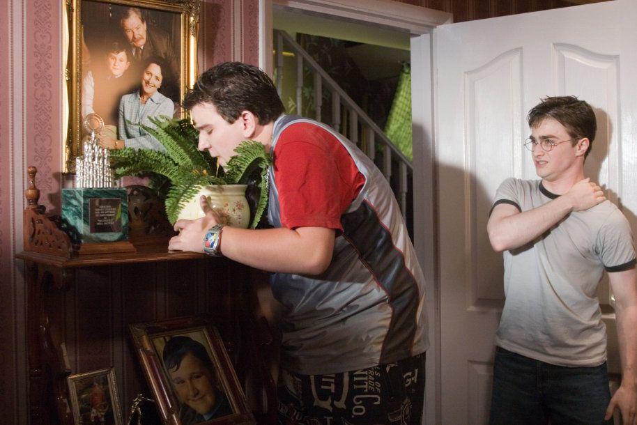 Harry Melling sebagai Dudley Dursley