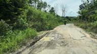 Jalan Provinsi di Lampung Rusak Parah