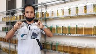 Cerita Ronaldo Keteteran Penuhi Permintaan Ikan Cupang Saat Pandemi Corona