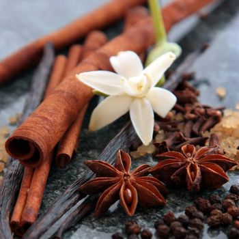 Star Anise (Illicium Verum). It contains a powerful ingredient that is used in Flu vaccines. It is also native to Vietnam and China.