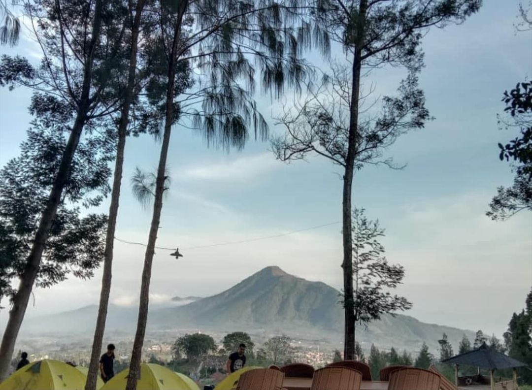 Camping Ground Pinus Cuntel