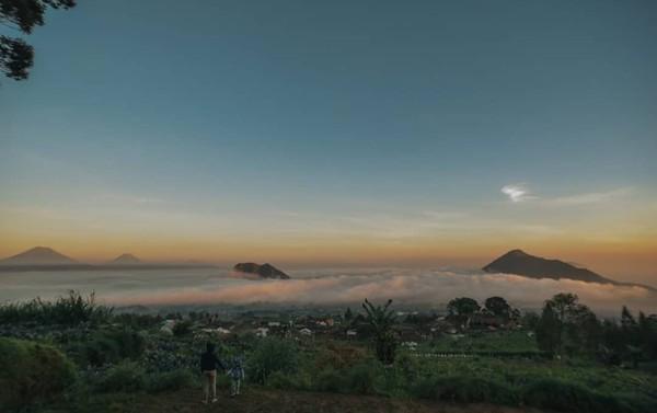 Konsep angkringan di tempat wisata di dusun Cuntel, Kopeng, Getasan, Kabupaten Semarang itu yakni angkringan di atas awan. (Dok Camping Ground Pinus Cuntel)