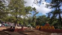 Selain daerahnya sejuk, dan ditumbuhi pohon pinus, Wisata Alam Malino yang berada di Kecamatan Tinggimoncong, Kabupaten Gowa, Sulawesi Selatan ini juga punya wisata naik kuda buat traveler. (Ibnu Munsir/detikcom)
