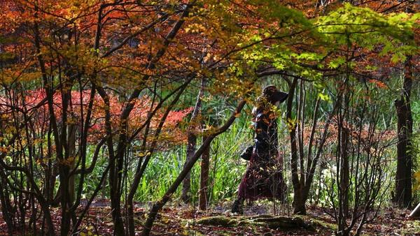 Musim gugur tersebut membuat pepohonan mulai berubah warna.