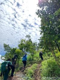 Hiking di Sentul sekarang telah menjadi salah satu liburan yang sedang hits di banyak kalangan. Di sana, traveler dapat melakukan trekking dengan melewati sejumlah jalur ciamik yang cukup memanjakan mata.