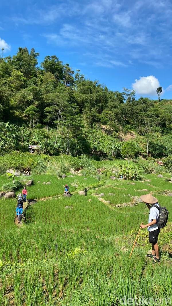 Momen libur bisa dimanfaatkan traveler untuk mengunjungi tempat-tempat wisata yang menarik. Salah satu yang patut didatangi adalah wisata treking atau hiking di kawasan Sentul, Bogor.