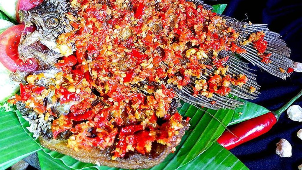 Siap Manjakan Lidah, 5 Restoran di Kawasan Setiabudi Bandung