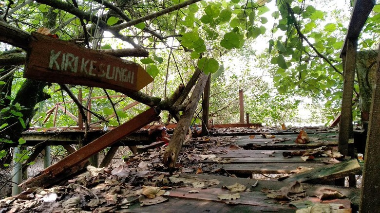 Jembatan Mangrove Pangandaran Terbengkalai Wisatawan Kecewa