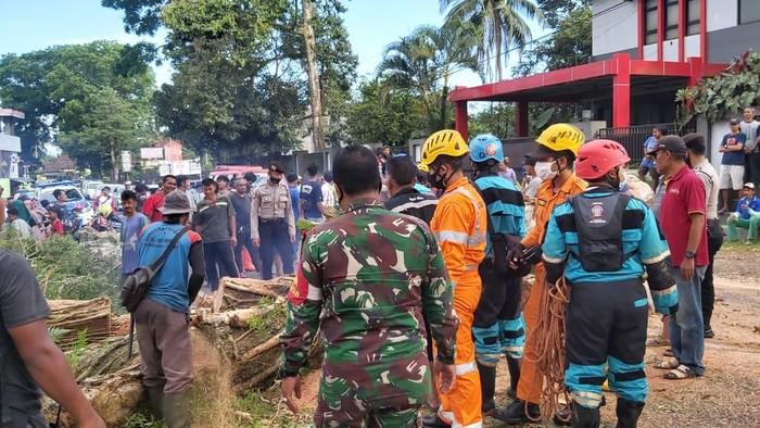 Petugas tengah mengevakuasi pohon tumbang yang menghalangi jalan