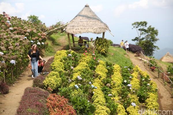 Taman Wisata Puncak Tetetana Tomohon menjadi salah satu ikon Sulut yang menarik. (Agung Pambudhy/detikcom)