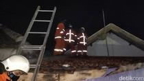 Disengat Tawon Vespa Saat Evakuasi Sarang, Petugas PMK Dilarikan ke RS