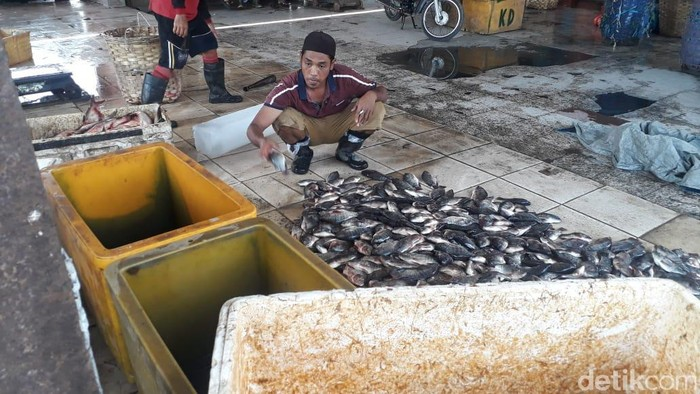 pasar ikan lamongan