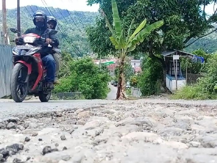 Warga Ambon tanam pohon pisang di jalan yang rusak parah