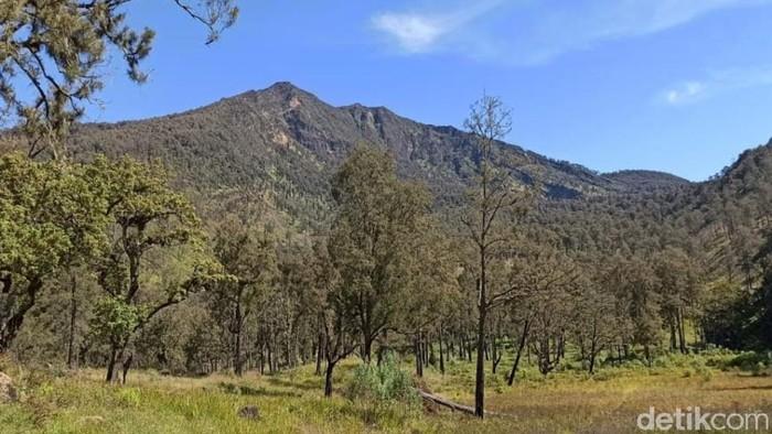 Buka Tutup Jalur Pendakian Gunung Arjuno-Welirang Dilakukan