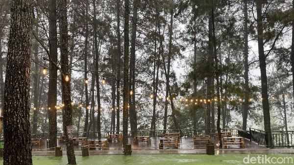 Kopi Daong ini terletak di Pancawati, Caringin, Bogor. Kopi Daong beroperasi dari pukul 09.00 sampai 19.00 WIB. Meski perjalanan yang dibutuhkan untuk mencapai tempat ini cukup panjang, tapi semuanya akan terbayarkan dengan pemandangan indah yang terhampar di depan mata. (detikFood)
