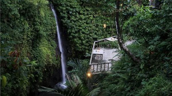 Resor Kayon berdiri di atas perbukitan Ubud. Dikelilingi oleh Sungai Petanu dan hutan hujan tripis yang rimbun membuat suasananya begitu teduh. (TripAdvisor)