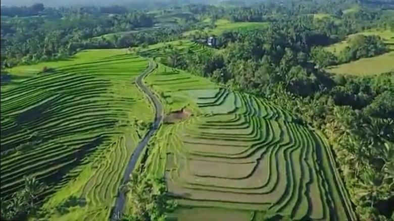 Desa Wanagiri Kauh