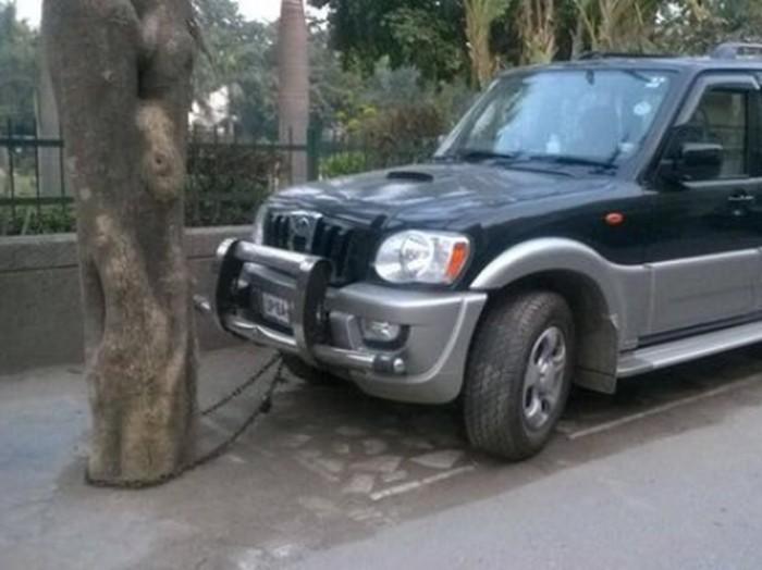 Mobil Dirantai ke Pohon