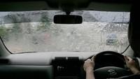 Penyebab Munculnya Jamur di Kaca Mobil dan Cara Membersihkannya