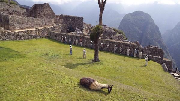Operator tur menawarkan paket seharga $ 250 untuk mengunjungi Machu Picchu, yang sebelum pandemi akan menelan biaya setidaknya $ 750.