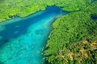 Cagar biosfir Karimunjawa. Cagar biosfer sangat penting dalam melestarikan keanekaragaman hayati di wilayah tengah pulau Jawa.