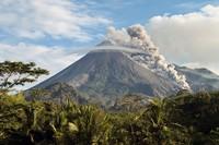 Cagar biosfer Merapi Merbabu Menoreh mencakup 254.877 hektar. Merupakan rumah bagi Taman Nasional Gunung Merapi, Taman Nasional Gunung Merbabu dan Suaka Margasatwa Sermo, setiap situs sangat penting dalam melindungi berbagai spesies endemik Jawa.