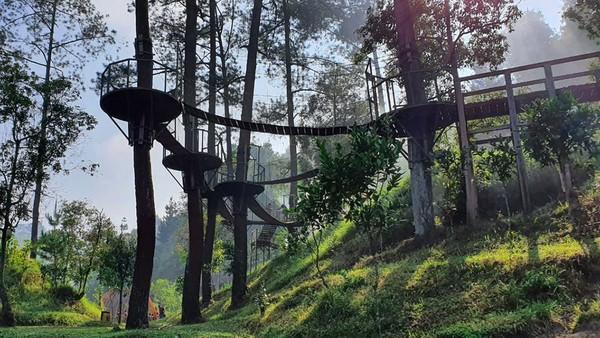 Cagar Merapi Merbabu Menoreh merupakan ekosistem hutan pegunungan yang menjadi rumah bagi flora dan fauna khas Jawa. Terletak di Jawa Tengah, di wilayah Indo-Malaya.