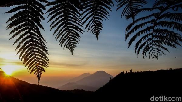 Gunung dengan ketinggian 2.565 mdpl ini menjadi rekomendasi untuk pendaki pemula.