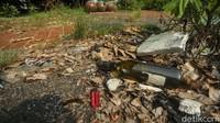 Selain itu, area taman telah dipenuhi sampah dedaunan yang berserakan.