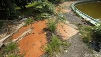Melihat kondisi tersebut, detikTravel menghubungi Badan Pengelola Aset Daerah (BPAD) DKI Jakarta sebagai pemilik dari taman tersebut. Menurut BPAD, taman ini sedang dalam proses untuk dikembangkan melalui pembangunan taman buku.