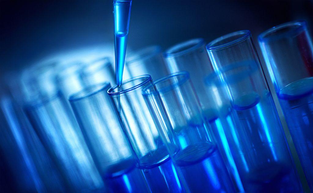 Dibutuhkan untuk Vaksin COVID-19, Darah Kepiting Tapal Kuda Harganya Rp 844 Juta