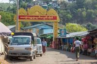 Lutung Popa kemungkinan pernah tersebar luas di seluruh Myanmar tengah, tetapi hanya beberapa kelompok yang selamat. Kini, individu yang tersisa hanya tinggal di empat tempat yang terisolasi (Foto: iStock)