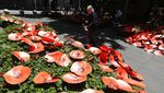 Merah Menyala Sydney Opera House Peringati PD I