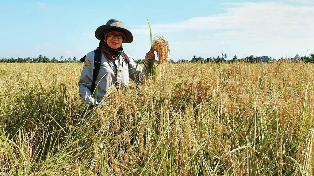 Milenial Didorong Manfaatkan Peluang Bisnis di Sektor Pertanian