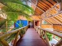 Rumah ini dilengkapi panel kaca besar pada dinding, anyaman pada langit-langit, jembatan kayu di lantai dua, dan kaca pada atap atau dikenal dengan skylight. Menurut situs Vrbo, harga sewa per malamnya adalah USD 3.225 atau sekitar Rp 45,7 juta.