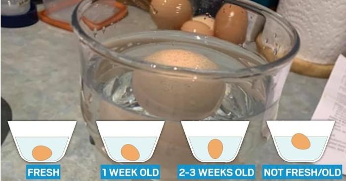 Cara Gampang Mengecek Apakah Telur Masih Bagus atau Tidak