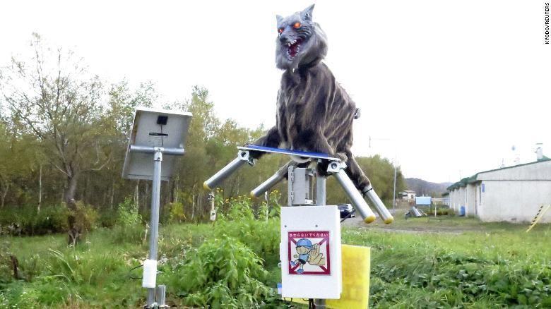 Robot monster serigala Jepang