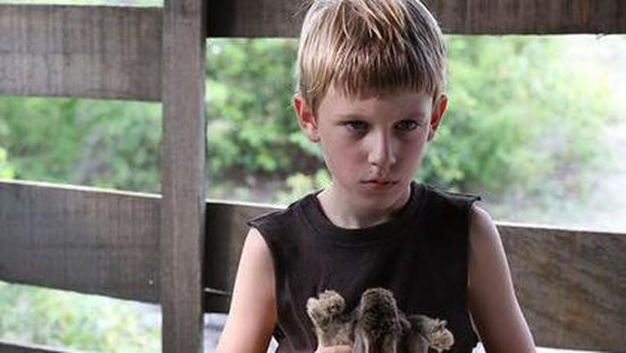 Sinopsis The Boy Arwah Bocah Lelaki Bawa Teror