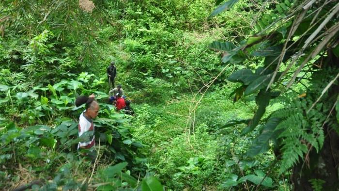 Warga Bandungan, Kabupaten Semarang berpatroli mengusir monyet liar yang menyerang sawah mereka.
